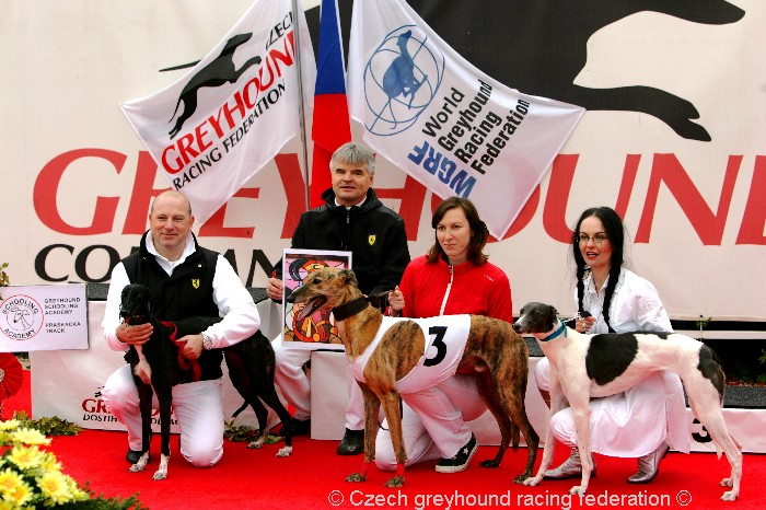 Greyhound_Schooling_Academy_Czech_Greyhound_Racing_Federation_NQ1M8686.JPG