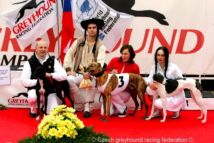 Greyhound_Schooling_Academy_Czech_Greyhound_Racing_Federation_NQ1M8697.JPG