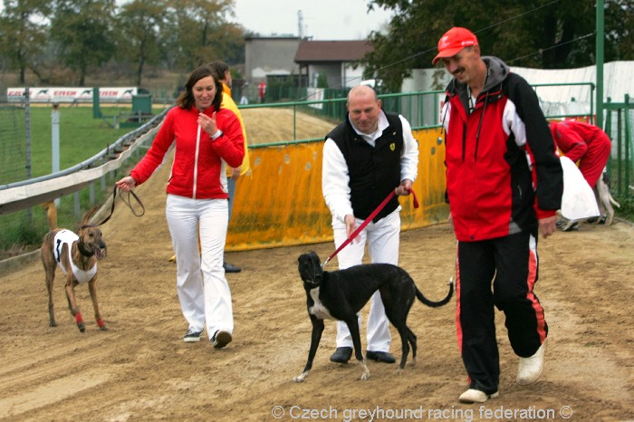 Greyhound_Schooling_Academy_Czech_Greyhound_Racing_Federation_NQ1M8765.JPG