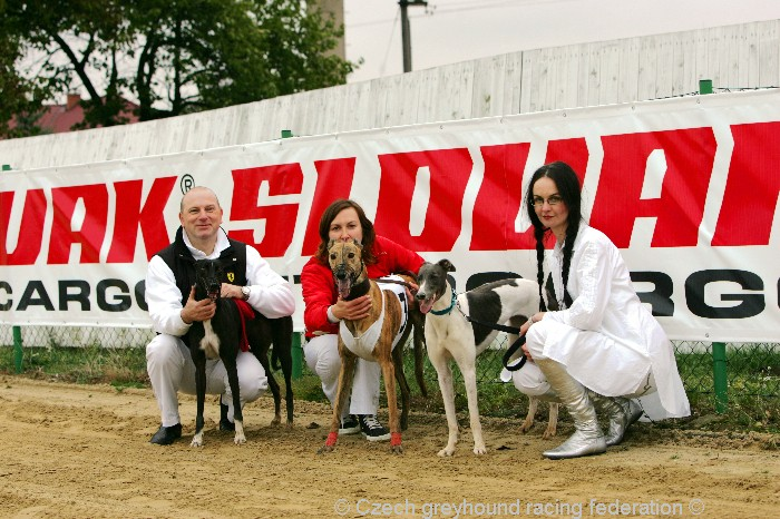 Greyhound_Schooling_Academy_Czech_Greyhound_Racing_Federation_NQ1M8785.JPG