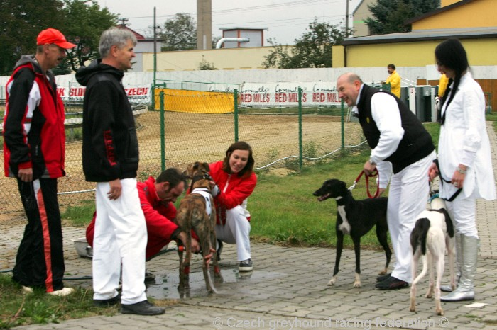 Greyhound_Schooling_Academy_Czech_Greyhound_Racing_Federation_NQ1M8825.JPG