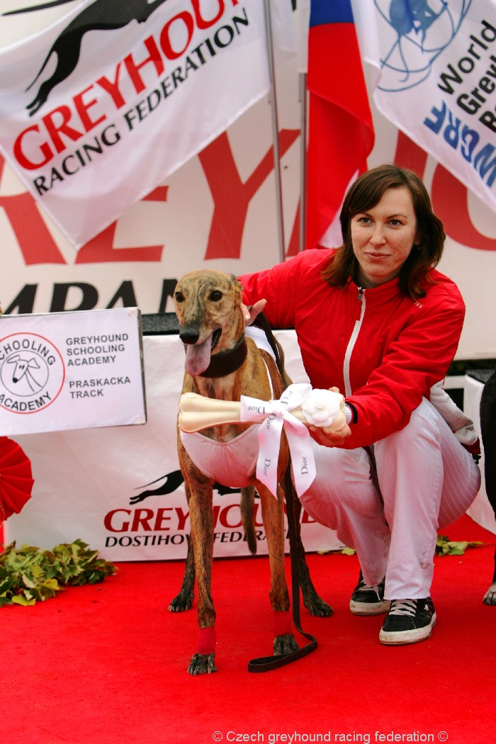 Greyhound_Schooling_Academy_Czech_Greyhound_Racing_Federation_NQ1M8901.JPG