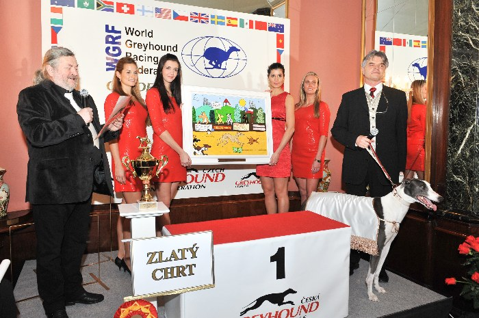 Greyhound_Cayenn_Elbony-Velmistr_Ringo_Czech_Greyhound_Racing_Federation_0260.jpg