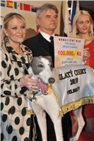 Golden_Greyhound_2010_Awards__336-v.jpg