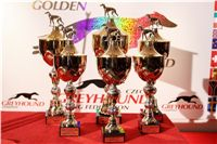Zlaty_chrt_2010_Golden_greyhound_cups_img_8372-jpg.jpg