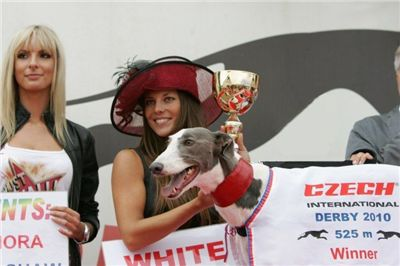 winner_525_Czech_Greyhound_Racing_Federation_NQ1M7699-u.jpg