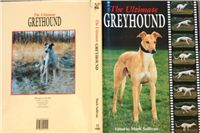 The_Ultimate_Greyhound_DSC04299.jpg