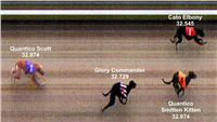 Photofinish_Czech_greyhound_race_track_Praskacka_22.jpg