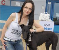 Puppy_Big_Daddy_Cool_Czech_Greyhound_Racing_Federation_DSC07360.JPG