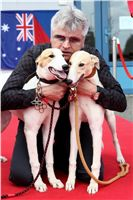 Puppy_Big_Daddy_Cool_Czech_Greyhound_Racing_Federation_IMG_2030.JPG