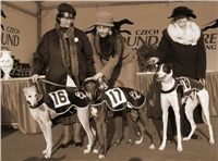 European_Breeders_Cup_2007_Czech_Greyhound_Racing_Federation_pani_doktorova.jpg