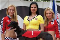 007_Zlaty_Chrt_Dior_Czech_Greyhound_Racing_Federation_DSC02799_u_d_2.jpg