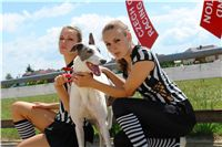 White_Zlaty_chrt_Velmistr_Czech_Greyhound_Racing_Federation_DSC00172.jpg