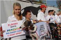 White_Zlaty_chrt_Velmistr_Czech_Greyhound_Racing_Federation_DSC05504.JPG