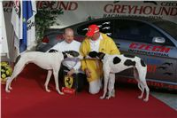 White_Zlaty_chrt_Velmistr_Czech_Greyhound_Racing_Federation_NQ1M1321.jpg