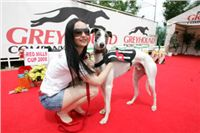White_Zlaty_chrt_Velmistr_Czech_Greyhound_Racing_Federation_NQ1M5246.JPG