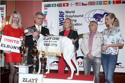 Golden_Greyhound_Awards_winners_Czech_Greyhound_Racing_Federation_FRH_7045.jpg