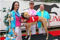 Winner_Lemon_Moet_Czech_Greyhound_Racing_Federation_DSC06886.JPG