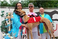 Winner_Lemon_Moet_Czech_Greyhound_Racing_Federation_DSC06889.JPG