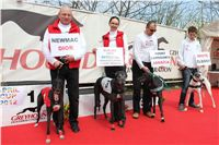 Winner_NewMac_Dior_Czech_Greyhound_Racing_Federation_IMG_4504.JPG