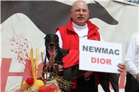 Winner_NewMac_Dior_Czech_Greyhound_Racing_Federation_IMG_4562-v.JPG