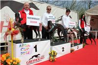 Winner_NewMac_Dior_Czech_Greyhound_Racing_Federation_IMG_4562.JPG