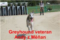 Andy_z_Menan_Czech_Greyhound_Racing_Federation_IMG_4795.jpg