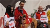 Chti_dostihy_April_Cup_2012_Czech_Greyhound_Racing_Federation_DSC07844.JPG
