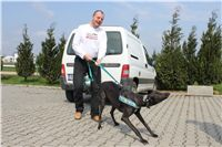 Chti_dostihy_April_Cup_2012_Czech_Greyhound_Racing_Federation_IMG_4347.JPG