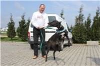 Chti_dostihy_April_Cup_2012_Czech_Greyhound_Racing_Federation_IMG_4348.JPG