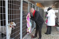 Chti_dostihy_April_Cup_2012_Czech_Greyhound_Racing_Federation_IMG_4374.JPG