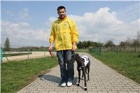 Chti_dostihy_April_Cup_2012_Czech_Greyhound_Racing_Federation_IMG_4404.JPG