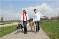 Chti_dostihy_April_Cup_2012_Czech_Greyhound_Racing_Federation_IMG_4406.JPG
