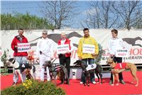 Chti_dostihy_April_Cup_2012_Czech_Greyhound_Racing_Federation_IMG_4413.JPG