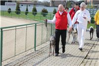 Chti_dostihy_April_Cup_2012_Czech_Greyhound_Racing_Federation_IMG_4442.JPG