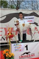 Chti_dostihy_April_Cup_2012_Czech_Greyhound_Racing_Federation_IMG_4613.JPG