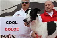Chti_dostihy_April_Cup_2012_Czech_Greyhound_Racing_Federation_IMG_4630.JPG