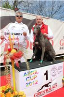 Chti_dostihy_April_Cup_2012_Czech_Greyhound_Racing_Federation_IMG_4673.JPG