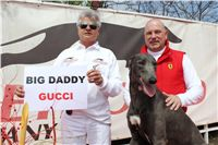 Chti_dostihy_April_Cup_2012_Czech_Greyhound_Racing_Federation_IMG_4683.JPG