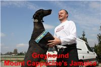 Mount_Cappucines_Jamaica_Czech_Greyhound_Racing_Federation_IMG_4352.jpg