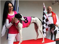 Winner_Dolce_Czech_Greyhound_Racing_Federation_IMG_0229.jpg