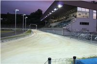 night_test_race_Greyhound_Park_Motol_IMG_8661.JPG