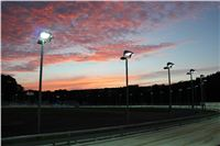 night_test_race_Greyhound_Park_Motol_IMG_8663.JPG
