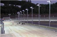 night_test_race_Greyhound_Park_Motol_IMG_8679_v.JPG