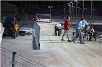 night_test_race_Greyhound_Park_Motol_IMG_8688.JPG