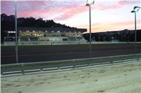 night_test_race_Greyhound_Park_Motol_IMG_8689.JPG