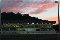 night_test_race_Greyhound_Park_Motol_IMG_8691.JPG