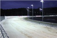 night_test_race_Greyhound_Park_Motol_IMG_8703.JPG