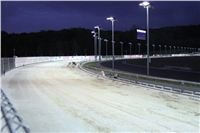 night_test_race_Greyhound_Park_Motol_IMG_8709.JPG