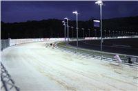 night_test_race_Greyhound_Park_Motol_IMG_8710.JPG